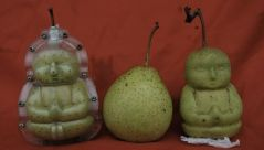 baby-shaped-pears-china.img_assist_custom